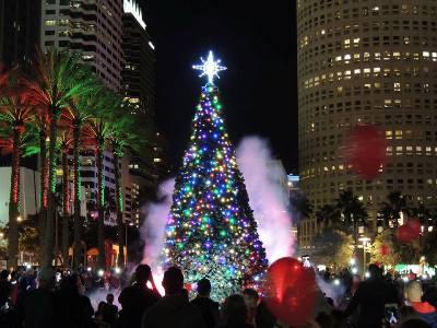 Christmas Lights Tampa 2019 Tree Lighting   FRIENDS OF TAMPA RECREATION